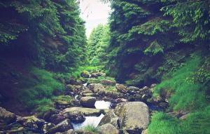 Położenie Zakopanego i piękno Tatr